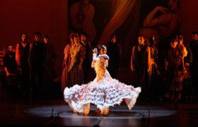 Flamenco Passion Show